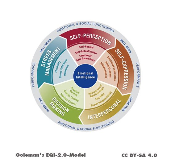emotional intelligence (EI) increases job performance, job satisfaction and leadership abilities